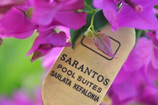 sarantos pool suites in sarlata
